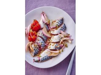 Marynowane filety z makreli