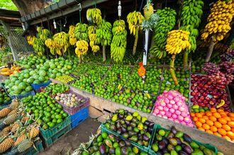 Co natura dała Sri Lance?