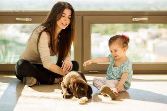 Pies – przyjaciel czy wróg małego dziecka?